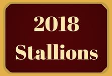 2018 Stallions